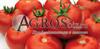 Семена томата Гравитет F1 500 шт - фото 9350