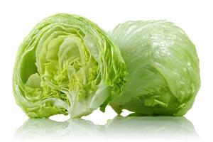 Семена салата типа Айсберг (кочанный хрустящий)