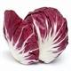 Семена салата Родичио (цикорий красный кочанный)