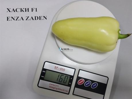 Семена перца Хаски F1 500 шт - фото 10529