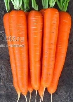 Семена моркови Лагуна F1 25 000 шт