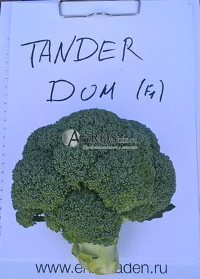 Семена капусты брокколи Тандер Дом F1 2500шт