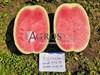 Семена арбуза Астрахан F1 1000 шт - фото 10112