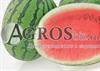 Семена арбуза Премиум F1 1000 шт - фото 8836