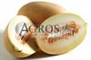 Семена дыни Соккар F1 1000 шт - фото 8838