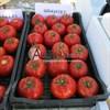 Семена томата Гравитет F1 500 шт - фото 9349