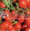 Семена томат Дельфо F1 1000 шт - фото 9369