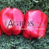 Семена перца Геркулес F1 5 г - фото 9410