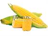 Семена кукурузы Спирит F1 1 кг - фото 9466