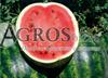 Семена арбуза Кримсон Руби F1 1000 шт - фото 9597