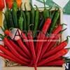 Семена перца острого Хайфи F1 250 шт - фото 9792