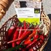 Семена перца острого Хайфи F1 250 шт - фото 9794